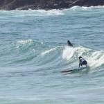 II Malpica Longboard Classic | Foto: Arantza & Yago | Rider: Lorena